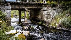 _61A4244.jpg (fotolasse) Tags: stenfors natur nature sweden sverige småland kronoberg å vatten water river bäck sten grönt green canon hdr 16x9 tingsryd
