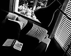 The Reader - one type of Human - EXPLORE (ronramstew) Tags: book shadows couch reading tentypesofhuman dexterdias dias explore