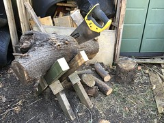 Mini Sawbuck (basswulf) Tags: ipadpro unmodified 43 image:ratio=43 permissions:licence=c 20170708 201707 4032x3024 normcres oxford england uk garden sawbuck saw wood woodchopping lumber sawing diy