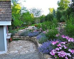 13 (KIẾN TRÚC XANH CARA) Tags: thiết kế và bố trí cảnh quan sân vườn