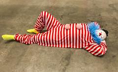 'vocabulary of solitude' (pbo31) Tags: berkeley california iphone7 eastbay alamedacounty universityofcaliforniaberkeley cal museum art july 2017 summer color boury pbo31 exhibition bampfa berkeleymuseumofartpacificfilmarchive campus ugo rondinone artist weird clown red sleep floor silly circus relax laidback sleepy idiot