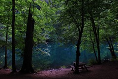 Real nature (burcuÖzcan) Tags: nature forest green lake landscape view yedigöller