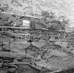 wrm (pavel photography) Tags: reflection window bwfilm blackandwhitefilm 6x6film 6x6 mediumformatfilm mediumformat hasselblad hasselblad500cm distagon50mm ilford columbus film monochrome
