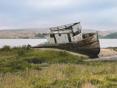 Point Reyes, CA (sfldp) Tags: oregon pch pacificcoast pacificocean beach pacific coast highway us1 101 1 redwoods state park crater lake national motorcycle indian scout snow mountains forest adventure explore roadtrip road trip selfie sony sonya6300 rokinon12mm rokinon a6300