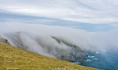 The fog rolls over Cape St Mary's (Photosuze) Tags: landscape newfoundland capestmarys ecologicalreserve fog canada ocean cliffs clouds sky water tundra land