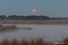 Puesta de luna (Iban Lopez (pepito.grillo)) Tags: d90 amanecer lagunasdelrasodeportillo luna moonlight dawn laguna ©ibanlópez
