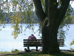 Green Lake, Seattle, Washington (Don Briggs) Tags: donbriggs nikoncoolpix995 greenlakeseattlewashington