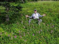 Platanthera psycodes (Small Purple Fringed orchid) -- Jim Fowler amidst dozens of orchids! (jimf_29605) Tags: platantherapsycodes smallpurplefringedorchid blueridgeparkway northcarolina olympus e5 zd zuiko 1260mm yanceycounty jimfowler mtmitchellstatepark