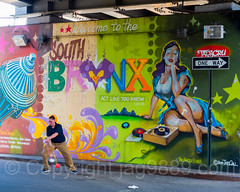 """Welcome to the South Bronx"" Mural, New York City (jag9889) Tags: 2017 20170603 allamericacity bronx firehydrant graffiti juggler mural music ny nyc newyork newyorkcity outdoor painting player southbronx streetart tagging tatscru thebronx usa unitedstates unitedstatesofamerica wall welcome woman jag9889 us brucknerboulevard colorful motthaven oneway sign traffic underpass brucknerexpressway"