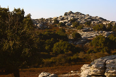 In view of forested uplands and piles of egg-shaped rocks (isl_gr (Mnesterophonia)) Tags: ikaria ικαρία erifi hikingtrails september plateau oaks ferns ridgewalk atheras rocks aegean greece μονοπάτια transikariantrail landscape quercusilex