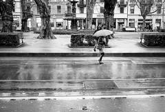 rainy boredom (gato-gato-gato) Tags: dezember feierabend ilford leica leicam6 leicasummiluxm35mmf14 m6 messsucher schweiz strasse street streetphotographer streetphotography streettogs suisse svizzera switzerland wetzlar winter zueri zuerich zurigo analog analogphotography believeinfilm black classic film filmisnotdead filmphotography flickr gatogatogato gatogatogatoch homedeveloped manual rangefinder streetphoto streetpic tobiasgaulkech white wwwgatogatogatoch leicasummilux35mmf14asph aspherical summilux 35mm zürich ch leicamp mp manualfocus manuellerfokus manualmode schwarz weiss bw blanco negro monochrom monochrome blanc noir strase onthestreets mensch person human pedestrian fussgänger fusgänger passant zurich