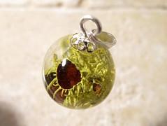 Letharia columbiana (chaerea) Tags: necklace jewelry jewellery pendant mycology fungi algae lichen letharia nature