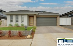 26 Ken Tribe Street, Coombs ACT