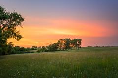 Pasture Sunset (thefisch1) Tags: sunset intense red pin pasture blue stem grass horizon tree kansas