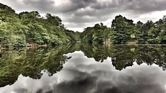 Some times to you see things differently (kriswoods2322) Tags: lake rabymere england merseyside water samsungphone sky trees
