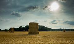 harvest (Danyel B. Photography) Tags: harvest ernte straw stroh field feld landscape sky clouds sun sonne himmel landschaft sony