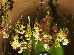 underground-tunnel-floraart-instalation_12