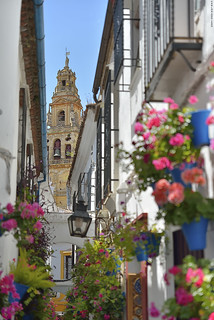 Flowers alley (Córdoba, Spain)