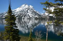 (Dylan H little access, on the Road) Tags: usa northamerica roadtrip wyoming grandteton mountain reflection jennylake lake forest landscape