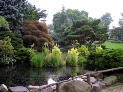 07 Pond (megatti) Tags: buckscounty flowers lahaska pa peddlersvillage pennsylvania pond