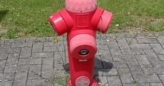 """Der Hydrant. Die Hydranten. Die Feuerwehr bezieht ihr Löschwasser aus Hydranten oder offenen Gewässern (Teiche, Flüsse oder Kanäle). • <a style=""""font-size:0.8em;"""" href=""""http://www.flickr.com/photos/42554185@N00/35182409882/"""" target=""""_blank"""">View on Flickr</a>"""
