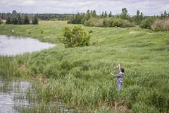 IMG_0711 (d_propp) Tags: fishing fly fisherman flyfishing loisholecentennialprovincialpark