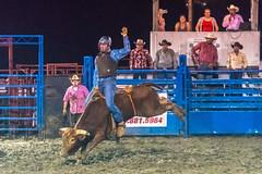DSC_4520-Edit (alan.forshee) Tags: rodeo horse cow ride fall buck spin twirl bull stallion boy girl barrel rope lariat mud dirt hat sombrero