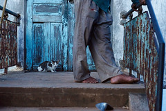 Black cat on door step behind human feet, Kompong Chhnang, Cambodia (Alex_Saurel) Tags: doorframe cambodge pleinformat photoreportage door archicategory people detail travel frame chat reportage type fullframe time scans horizontal wood porte photojournalism animal doorway orientation day photospecs cat photoreport asia feet stockcategories zeissplanart85mmf14zasal85f14z