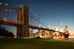 Dazzled (bprice0715) Tags: canon canoneos5dmarkiii architecture architecturephotography canon5dmarkiii brooklynbridge brooklyn bridge tiltshift tiltshifteffect bluehour city cityscape urban nyc newyorkcity colorful