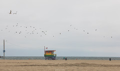 Lifeguard Tower | Venice Beach, CA (jc.deluna@rocketmail.com) Tags: ocean lifeguardtower lifeguard baywatch venicebeach represent colors venice california losangeles cali