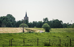 Some say, there's always a road . . (Eduard van Bergen) Tags: kerk eglise kirche church molenwaard alblasserwaard rijksmonument 18766 1500 dutch netherlands niederlande holland dienst toren spits beuk schip still picture photo shot river lek rivier dike polder land clock bells klokken minister dominee voorganger koster preek klokkenstoel haan cock windwijzer stone brick weathervane windvaan kruis cross kreuz croix bible holy book sacred congregation building architecture road weg grootammers field meadow
