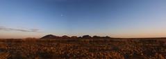 Kata Tjuta Panorama Edit 2 RS (Swebbatron) Tags: fujif20 panorama dawn katatjuta northernterritory australia sunrise theolgas valleyofthewinds 2008 radlab lifeofswebb travel redcentre groovygrape