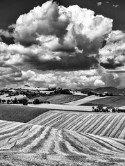 Marche countryside (Luigi Alesi) Tags: sanseverino italia italy marche macerata pollenza rambona san severino paesaggio landscape scenery campagna country countryside estate summer cielo sky nuvole clouds bianco e nero black white bn bw nikon coolpix p330 raw