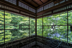 Rurikoin, Kyoto, Japan (mikemikecat) Tags: 書院二階 八瀬大原 風雅有情 八瀨逍遙 瑠璃の庭 京都 瑠璃光院 rurikoin kyoto japan reflection mirror architecture house temple green 庭園 sel1635z fe1635mm a7r sony interior