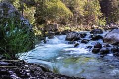 cry me a river (mtrc96) Tags: water river mountain france montagne alpes alps canon100d canon rivière rocks landsape wild nature