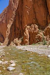 BI4A7903 (wolfgang.r.weber) Tags: marocco gorge todra