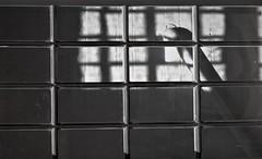 Shadow Rail (Tim Schreier) Tags: buffalo buffalonewyork newyorkstate upstate westernny hhrichardson trainterminal buffalocentralterminal fellheimerwagner architecture landmark nationalhistoriclandmark newyorkcentralrailroad nycentralrailroad centalterminalrestorationcorp empirestatedevelopment marklewandowski
