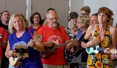 Southampton Ukulele Jam (Chalto!) Tags: beggarsfair southamptonukulelejame testvalley hampshire music musician performer romsey ukulele