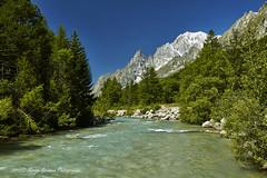 Aostatal_Val Ferret_Mont Blanc (Martin Germann) Tags: mountain alps italy montblanc aostatal natur erholung