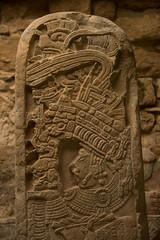 Yaxchilan, Mx (Rod Waddington) Tags: mexico mexican yaxchilan carving maya indian indigenous ruins ruinas