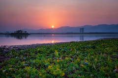 Another Sunset at Rawal Dam, Islamabad (hamzaqayyum) Tags: sunset reflections lake landscape islamabad water pakistan nature dam sun tree outdoor travel
