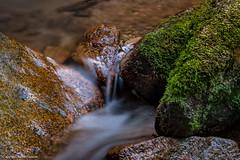 Am Bachlauf - Langzeitbelichtung 1.Versuch (J.Weyerhäuser) Tags: badenbaden wasserfall sommerakademie langzeitbelichtung wildbach