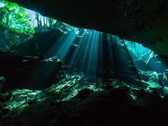 Beaming (altsaint) Tags: 714mm chacmool gf1 mexico panasonic cavern caverndiving cenote scuba underwater