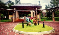 https://foursquare.com/v/bukit-cerakah-shah-alam/4c1d7c2463750f47c16ab867 #holidays #travel #garden #green #nature #outdoor #Asian #Malaysia #selangor #shahalam #度假 #旅行 #大自然 #绿色 #外景 #公园 #亚洲 #马来西亚 #雪兰莪 #沙阿南