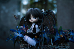 Night Flowers (dreamdust2022) Tags: eris sweet cute charming happy playful tender loving hug kiss magical little young baby dragon girl dal doll sparrow dama mizar