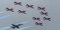 Parliament Hill Flypast (rickmacewen) Tags: ottawa parliamenthill airplane aircraft snowbirds flypast