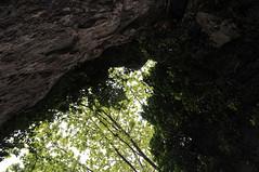 Panas cave, entrance (st.delis) Tags: είσοδοσσπηλαίου σπήλαιοπανόσ βράχοσ πάρνηθα αττική ελλάδα caveentrance panascave rock parnitha attica hellas