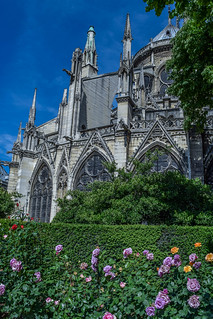 Notre Dame and Gardens