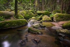 green paradise (Lena Held) Tags: longexposure landzeitbelichtung dost oberpfalz bayern deutschland germany bavaria travel global 5dsr canon weitwinkel 1635mm rocks felsen stones