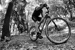 29er (fil.nove) Tags: parco maddalena 29er 29 f29 cannondale cannondaleflash29 falsh29 mtb vtt mountainbike mountainbiking sportphotographer sport actionphoto actionsport blackandwhite biancoenero canon60d samyang8mm samyang fisheye alberi trees bosco bush torino turin italia piemonte salita climbing mountaibike parcodellamaddalena collinaditorino collina hill twoniner lefty cannondalelefty mountainbikehardtail hardtail xc crosscountry 29pollici highiso